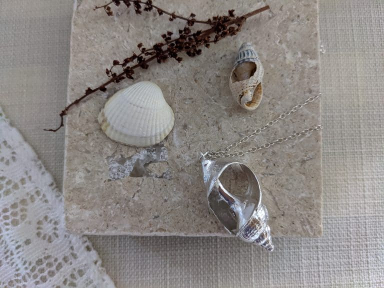Silver shell design necklace around shell display